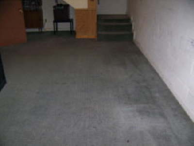 Cleaning Dark Spots on Rug - After Shure Clean Carpet Systems
