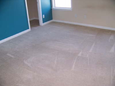 Heavily Soiled Bedroom Carpet