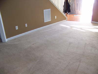 Carpet Cleaning In High Traffic Family Room